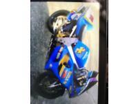 Suzuki bike rizzla paintwork