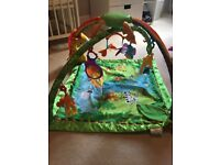 Fisher-price Rainforest Deluxe Play Gym