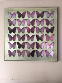 Canvas butterfly Picture frame from Next