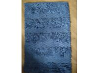 Blue Bathroom Carpets