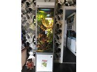custom made stunning vivarium