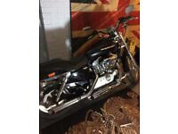Harley XL883C