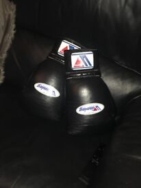 Boxing gloves winnings 12oz mint condition