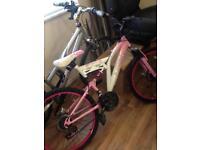 Girls Muddyfox Mountain Bike