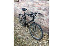 Black Raleigh Mountain Bike