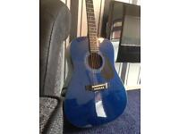 Hudson Guitar Mint/Never been used