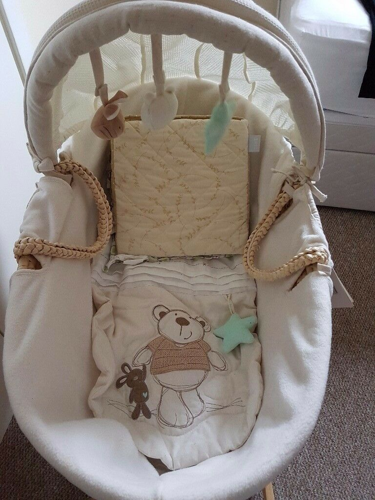 I love my bear moses basket