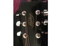 Hudson Guitar Co.