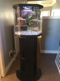 25 litre fish tank and stand