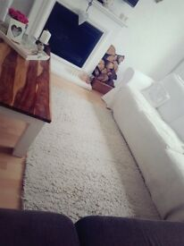 Beautiful cream rug