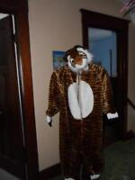 Lion costumes and others