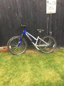 gaint mountian bike