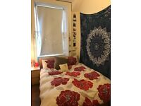 1 double room available for JULY IN BRUNTSFIELD