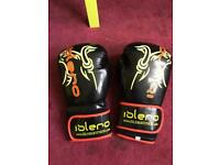 10oz men's boxing gloves