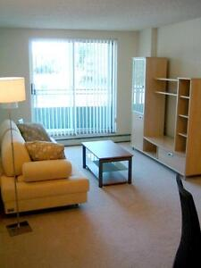 Blossom Gate - 1 Bedroom Apartment for Rent London Ontario image 5