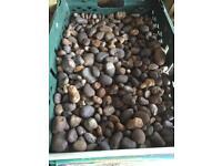 20-40mm decorative stone pebbles 4 crates