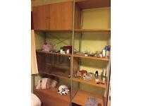Storage/display cabinet.