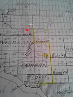 40 Acre Lot in NW Ontario for Sale, Nr MN USA & Manitoba Land!