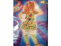 Adult clown Fancy dress