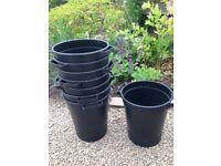 x8 floristry flower buckets - great for DIY wedding