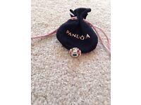 Pandora braclet charm, new