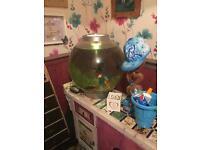 round fish tank with 5 fish