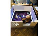 Whelping Box and Puppy Play Pen