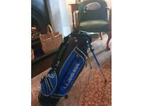 Junior Golf bag and 4 clubs