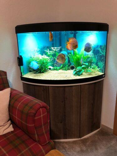 Aquarium komplett wie neu !!!