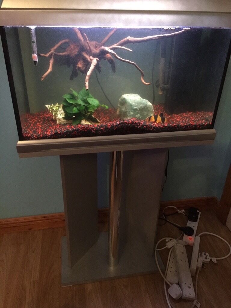 Aquarium for sale !!!!!!£65