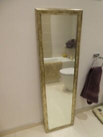Long Mirror with silvery/gold frame