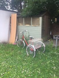 Vintage tricycle for sale