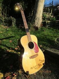 Superb condition Crafter T 035/N solid spruce top acoustic guitar and quality gator hard case