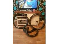 Alex rims 650b with tyres mtb wheels