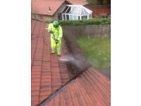 Professional roof cleaning, moss removal and kill treatment, gutter cleaning, power washing service