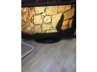 42 inch lcd with freeview & remote 1080p