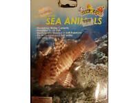 Glow in the dark sea animal for aquarium