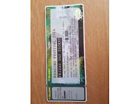 Reading festival FRIDAY DAY tickets