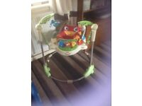 Rain Forrest jumperoo