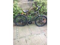 Urbin specialized bike