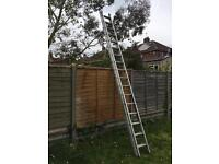 Ladder. Double section. 4.1m (17 rung) each section