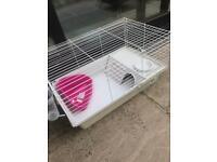 Guinea Pig Cage Ferplast 80