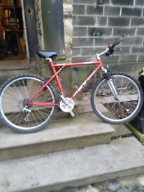 retro gt mountain bike terra ricochet triple triangle