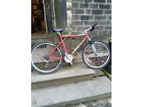 retro gt mountain bike terra ricochet triple triangle