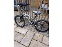 Magna punish bmx bike