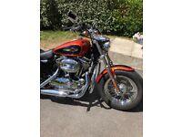 Immaculate Harley Davidson 1200 club Custom
