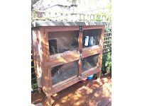Guinea pig hutch - free - v large