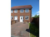 Town End farm,Sunderland. Immaculate 3 Bed New Build House.Garden. No Bond!DSS Welcome!