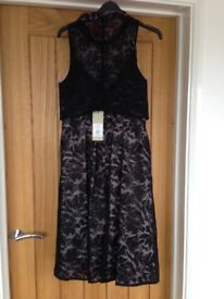 Brand new Coast lace dress ideal for wedding /races
