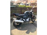 Suzuki SV1000 classic Rare future classic only 150 in the uk